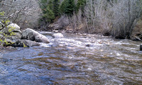 Favorite Fishing Spot - Boulder Creek